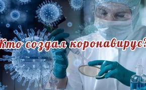 «А что если всё это спланировано?» Возможные создатели коронавируса могут быть виновны и в американских мятежах
