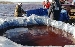 Эколог взял пробы воды. Мероприятия по ликвидации разлива топлива «Норникеля» - «профанация и красивая картинка для журналистов»