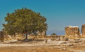 Под Краснодаром археологи нашли каменный снаряд для пращи бронзового века
