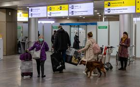 Аэропорты «Шереметьево» и «Внуково» готовы к возобновлению международных рейсов