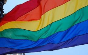 Перед школой в Петербурге две девушки водрузили радужный флаг