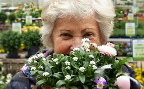 ПФР напоминает: с 1 августа у работающих российских пенсионеров повысится пенсия
