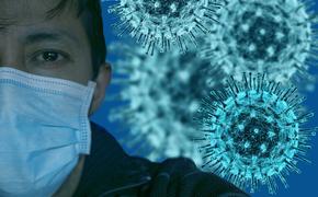 Коронавирус 19 июля: в РФ провели более 24,9 млн тестов на COVID-19, россияне стали реже носить маски