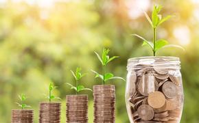 Вырастет ли евро до 90 рублей
