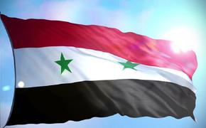 Военные Сирии нашли человеческие органы в лаборатории террористов