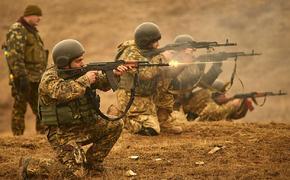 В ДНР озвучили срочное заявление о «грубом» нарушении ВСУ перемирия в Донбассе