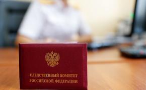 В Москве задержан проректор МГУ Алексей Гришин. Опубликовано видео из его шикарного особняка