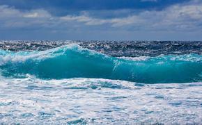 Не менее 1 тысячи тонн нефтепродуктов вытекло в океан из японского судна возле Маврикия