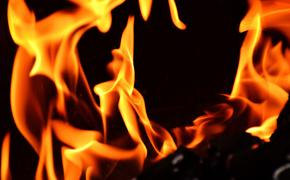 В турецком городе Мугла произошел пожар
