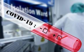 В оперативном штабе назвали регионы с наименьшими темпами прироста случаев заражения коронавирусом