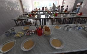Правительство распределит на обеспечение школьников горячим питанием 22 млрд рублей