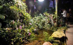 В рамках межведомственного проекта «Культура для школьников» стартовала акция «Культурная ботаника»