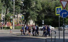 Власти Хабаровского края не нашли средств на безопасные подходы к школам