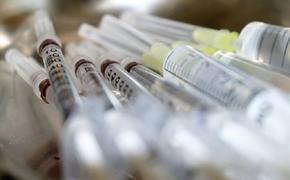 Ученые из Петербурга разработают комбинированную вакцину от гриппа и коронавируса