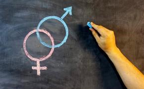 Уроки полового развращения: зачем России секс-просвет и чему дети «научатся сами»