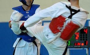 В Челябинске появится физкультурный комплекс для спортсменов тхэквондо