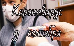 Коронавирус 9 сентября: неточности российской статистики и «живой» аналог вакцины