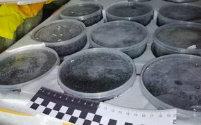 Приморчанин незаконно вывез из Хабаровского края икру на 2,2 млн руб.