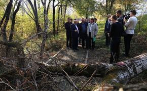 Мэра Хабаровска вызвали в суд из-за застройки в парке