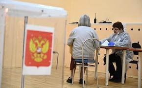 Эсеры прокомментировали итоги выборов в парламент Челябинской области