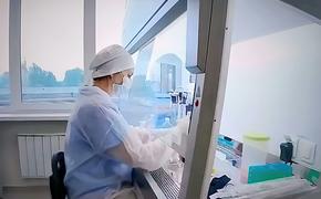 За сутки в России выявлено 6 065 новых случаев коронавируса COVID-19