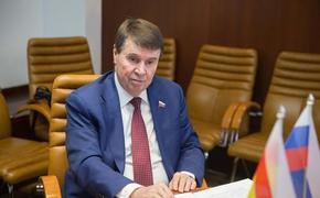 Сенатор Цеков прокомментировал последствия для Европы за отказ от «Северного потока — 2»