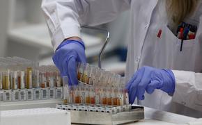 Вирусолог Альтштейн спрогнозировал всплеск заболеваемости COVID-19 в России к ноябрю