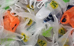 Российские магазины будут переходить на экологичные биоразлагаемые пакеты и упаковки
