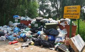 Депутат МГД Александр Козлов рассказал о необходимости усилить контроль за перевозчиками отходов