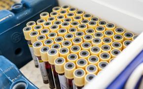 В России выявили 6 595 новых случаев заражения COVID-19