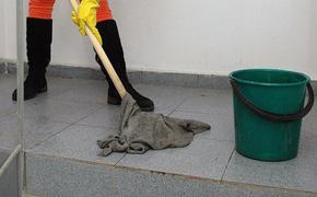 Уборщице, выигравшей муниципальные выборы в Костромской области, «сказали сидеть и не высовываться» и запретили общаться со СМИ