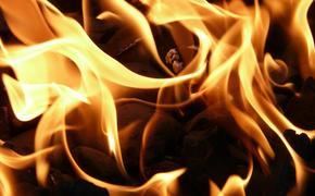 В Подмосковье произошел пожар на территории автосервиса в Дзержинском