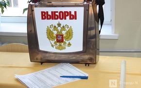 Выборы в Нижегородской области прошли с рекордной низкой явкой