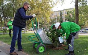 Экологический марафон «Зеленая волна» пришёл в Волгоград