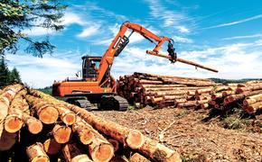 Нижегородская лесопереработка:  отрасли нужен импульс для развития