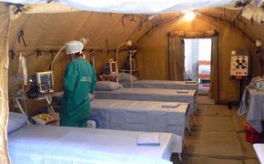 Минобороны РФ поможет Абхазии бороться с коронавирусом