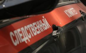 СК опубликовал видео с места убийства отца пилота «Формулы-1» Александра Петрова