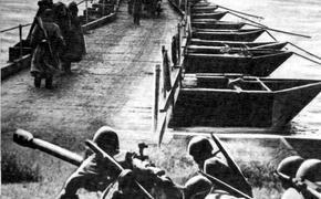 Сводка Совинформбюро за 5 ноября 1943 года