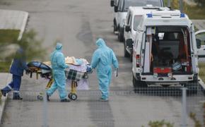 Иммунолог Жемчугов  назвал условие приостановки роста  случаев коронавируса в России