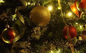 В Красноярске решили отменить все массовые новогодние мероприятия