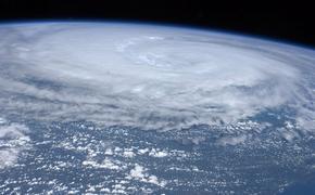 Чиновницу с острова Русский отстранят от работы за бездействие после циклона