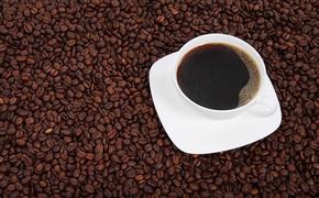 Врачи-диетологи Русакова и Ладнова развеяли мифы о вреде кофе