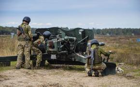 «Версия»: в конце января 2021-го армия Украины может атаковать Приднестровье по согласованию с Санду