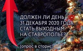 На Ставрополье статус 31 декабря определят местные жители