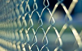Латвийским журналистам за сотрудничество с МИА «Россия сегодня» грозит до 4 лет тюрьмы