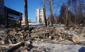 Дело о застройке территории у хабаровского парка