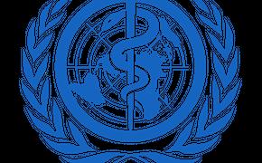 Команда ВОЗ отправилась в Ухань для изучения причин начала пандемии