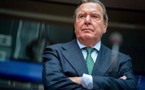 Бывший канцлер ФРГ Шредер подверг критике дискуссии о вступлении Украины и Грузии в НАТО