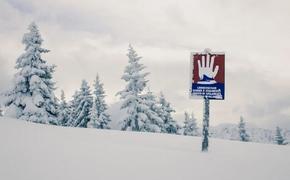 В Швейцарии при сходе лавины погиб лыжник