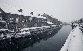 Более 60 человек погибли в Японии при уборке снега